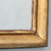 7-7520-Mirror_Plume_gilded-3.jpg