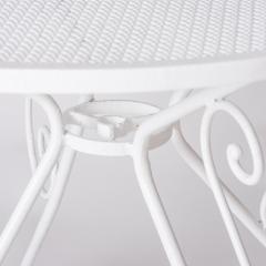 7-7870-Table_garden_French_metal rim-5