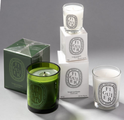 Figuier / Fig Tree diptyque scented candle perfumer