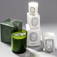Figuier / Fig scented candles